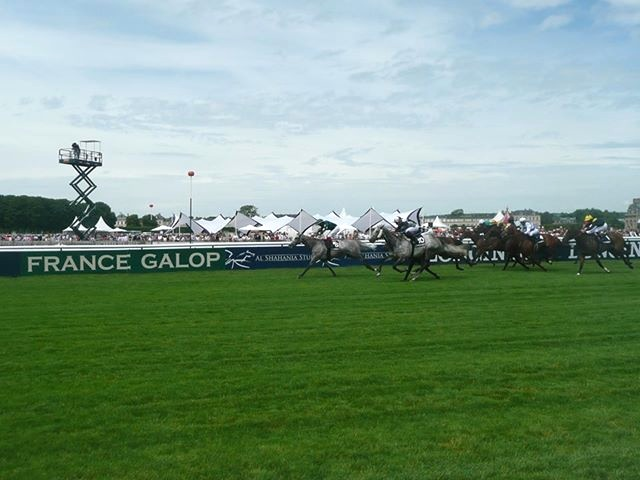 courses-france-galop